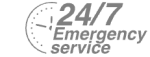 24/7 Emergency Service Pest Control in St Paul's, Fleet Street, EC4. Call Now! 020 8166 9746