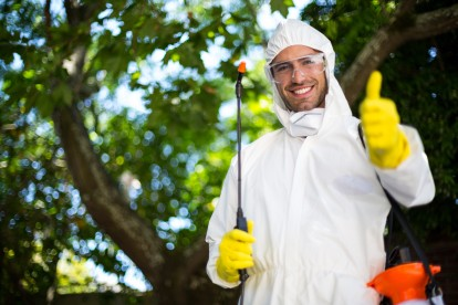 Pest Control in St Paul's, Fleet Street, EC4. Call Now 020 8166 9746